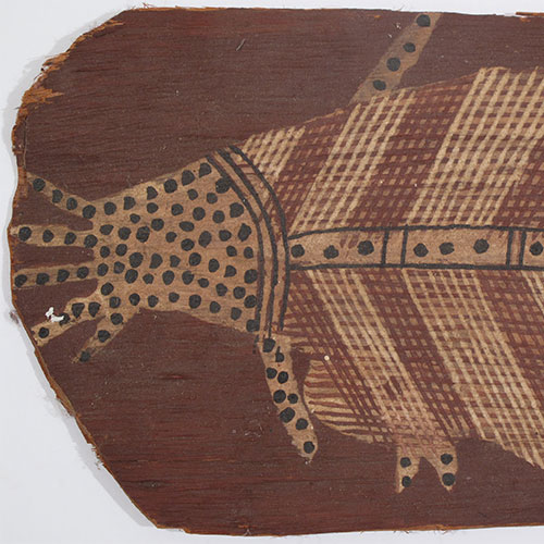 old aboriginal x ray bark painting artwork for sale australia